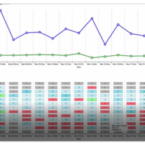 voloforce analytics TrAction traffic